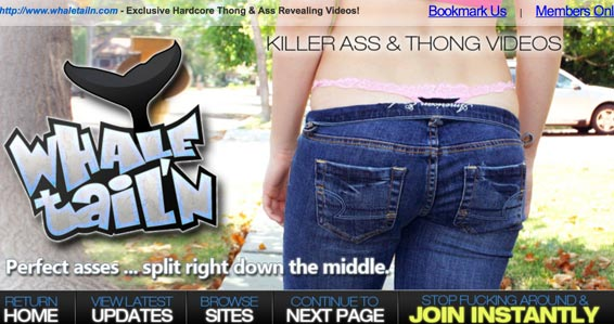 Whale Tails website